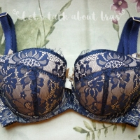 Bra Review: Comexim Victoria Plunge 60H standard & 60HH reduced cup comparison